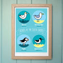 'Birds Of The Sea And Shore' Print