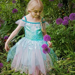 Girl's Aqua Fairy Dress Up Costume