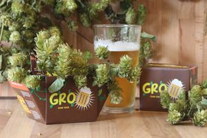 Grow Your Own Beer Gro'pot Set - window boxes