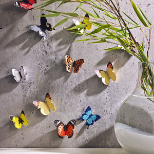 Butterfly Wall Decorations - dining room