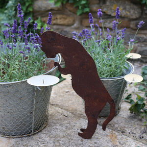Peering Cat Garden Decoration - art & decorations