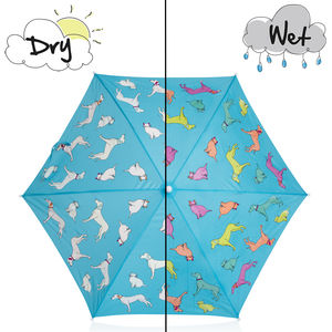 Children's Colour Changing Cats And Dogs Umbrella