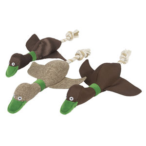 Quacks Thrower Dog Toy