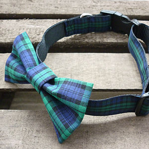 Tartan Dog Bow Tie - dog collars