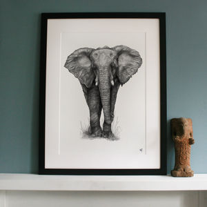 Signed Limited Edition 'Elephant' Framed Print