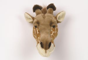 Decorative Animal Head Giraffe - nursery pictures & prints