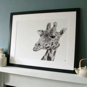 Signed Limited Edition 'Giraffe' Framed Print - home