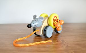 Wooden Pull Along Toys
