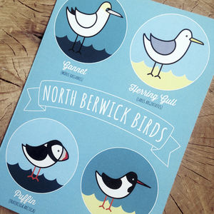 North Berwick Birds Card