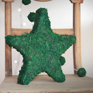 Real Moss Star Decoration
