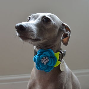 Dog Collar Flower Accessory - more