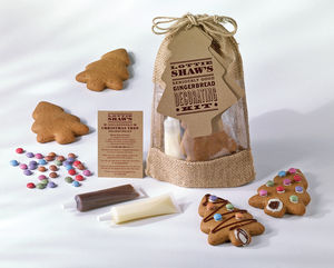 Gingerbread Decorating Kit - christmas