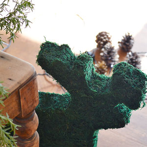 Moss Christmas Reindeer Decoration - pictures & prints for children