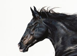 Galloping Black Horse Mounted Giclée Print