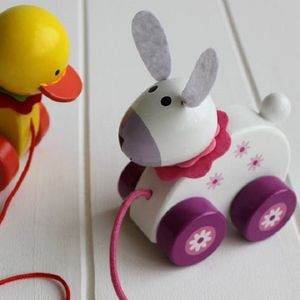 Wooden Pull Along Bunny - push & pull along toys