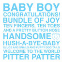 Baby Boy Sentiments Card