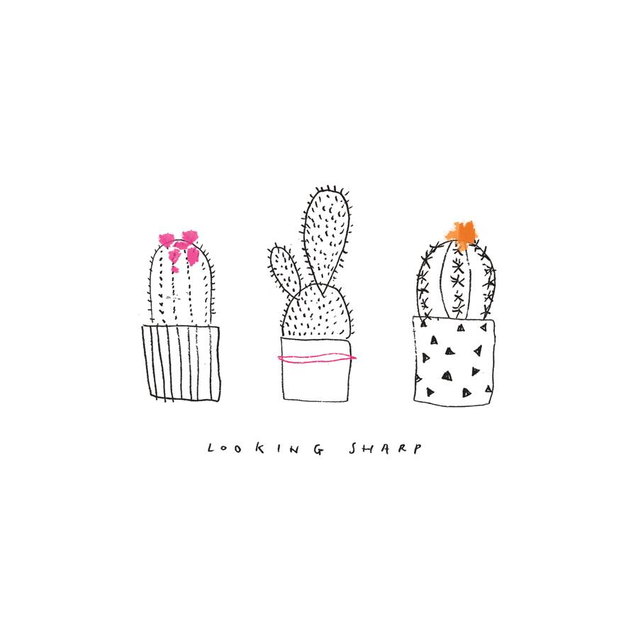Cactus Illustrated Art Print By The Lovely Drawer