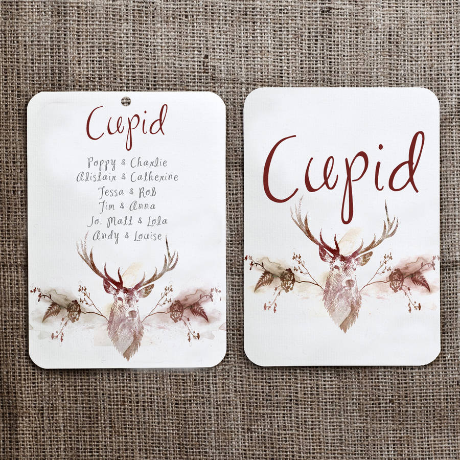 Reindeer Christmas Seating Plan And Table Name Cards By