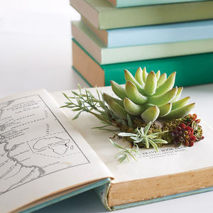 Artificial Succulents In Vintage Book Planter - retro living room