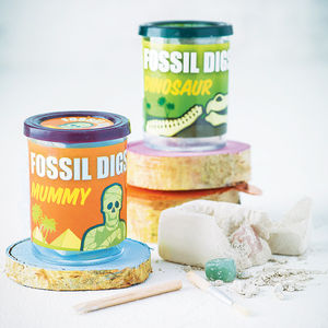 Fossil Dig Excavation Kit - toys & games