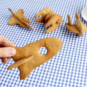 Bake Your Own 3D Space Ships - cookie cutters