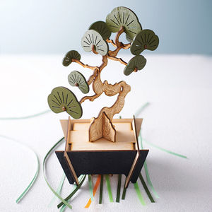 Flat Packed Yew Bonsai Tree Kit - gifts for her