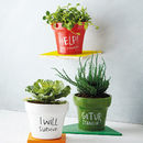 Lyrical Plant Pot