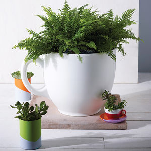 Tea Cup Planter - shop by category