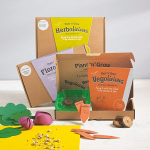 Pick N Mix Three Month Grow Your Own Seeds Subscription - garden sale