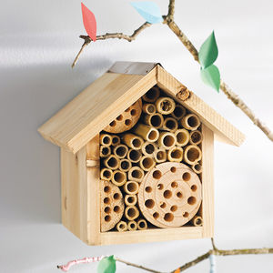 Bee Hotel And Flower Seeds - gifts for her
