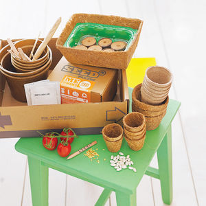 Family Grow Your Own Vegetables Kits - gifts for gardeners