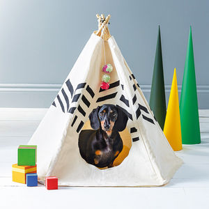 Striped Pet Tipi - dog beds & houses