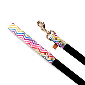 Olympic Athlete Dog Lead - dogs