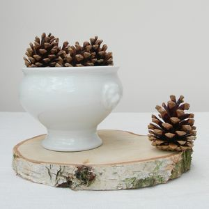 Silver Birch Log Slice Centrepiece - view all decorations