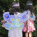 Colour Crazy Fairy Wings