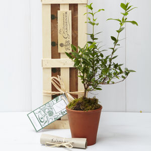 Rules Of Engagement Gift - gardening