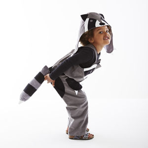 Raccoon Hat Fancy Dress