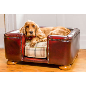Traditional Leather Tetford Square Chesterfield Dog Bed - dogs