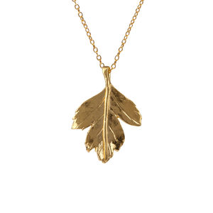 18k Gold Plated Hawthorn Leaf Necklace - summer sale