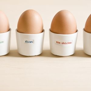 What Came First Egg Cups - egg cups & cosies