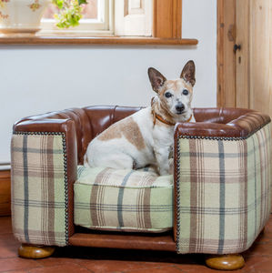 Burghley Buttoned Chesterfield Dog Bed - dogs