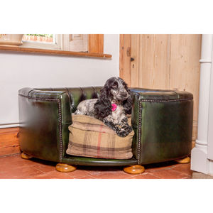 Full Leather Burton Corner Chesterfield Dog Bed - dogs
