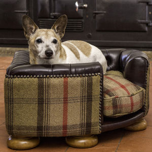 Half Leather Burton Corner Chesterfield Dog Bed - dog beds & houses