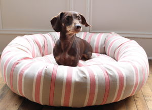 Stripe Donut Dog Bed