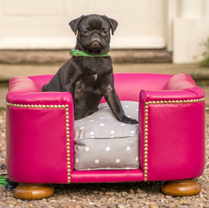 Contemporary Leather Tetford Chesterfield Dog Bed - dogs