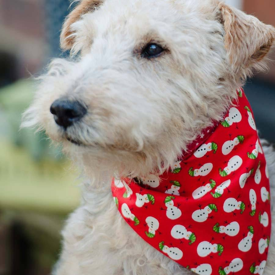 Christmas Bandanas For Large Dogs