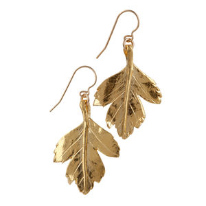 18k Gold Plated Sterling Silver Hawthorn Leaf Earrings - summer sale