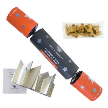 Biscuit Christmas Cracker For Dogs