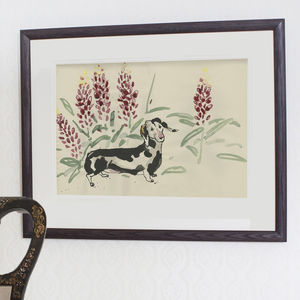 Tosca In The Lupins Print - animals & wildlife