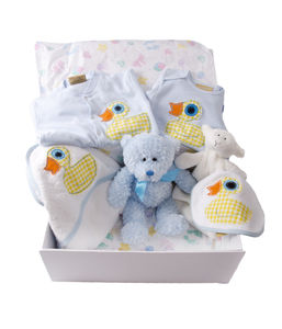 Baby Boy Duck Gift Hamper - baby care